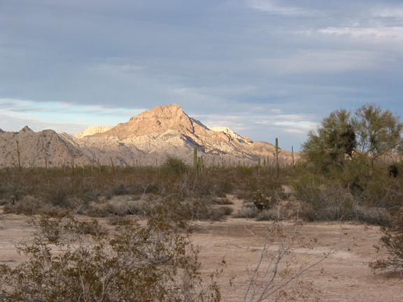 The desert brush is in shadow, but far off a blanket of sunlight drapes across a peak.